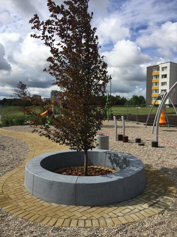 betoninė sienelė aplink medį