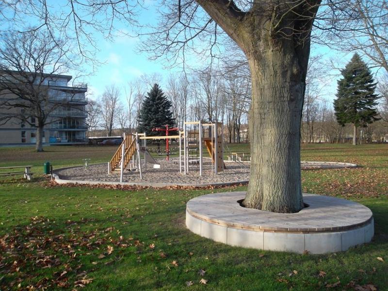 Betoformos lenktos betonines sienelės medžių įrėminimas