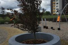 Betoninis atribojimas aplink medį