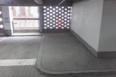 borteliai parkinge 2