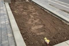 betono bordiurai klombos gelynams